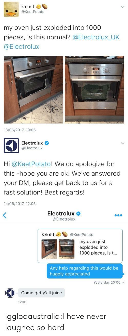 Juice, Tumblr, and Best: keet  O@KeetPotato  my oven just exploded into 1000  pieces, is this normal? @Electrolux_UK  @Electrolux  358  358  13/06/2017, 19:05   Electrolux  @Electrolux  Hi @KeetPotato! We do apologize for  this -hope you are ok! We've answered  your DM, please get back to us for a  fast solution! Best regards!  14/06/2017, 12:05   Electrolux  @Electrolux  keet ^@KeetPotato  my oven just  exploded into  1000 pieces, is t...  Any help regarding this would be  hugely appreciated  Yesterday 20:00  Come get y'all juice  12:01 igglooaustralia:I have never laughed so hard