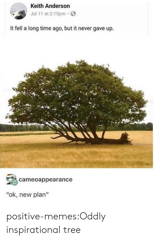 """Memes, Tumblr, and Blog: Keith Anderson  Jul 11 at 2:15pm  It fell a long time ago, but it never gave up.  cameoappearance  """"ok, new plan"""" positive-memes:Oddly inspirational tree"""