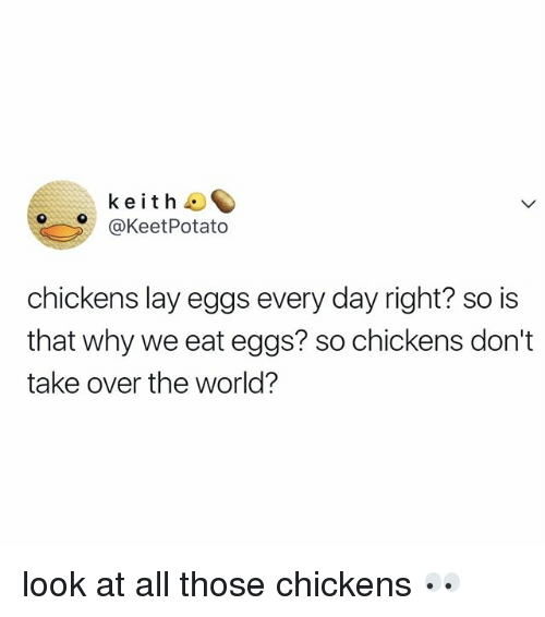 World, Relatable, and Keith: keith  @KeetPotato  chickens lay eggs every day right? so is  that why we eat eggs? so chickens don't  take over the world? look at all those chickens 👀