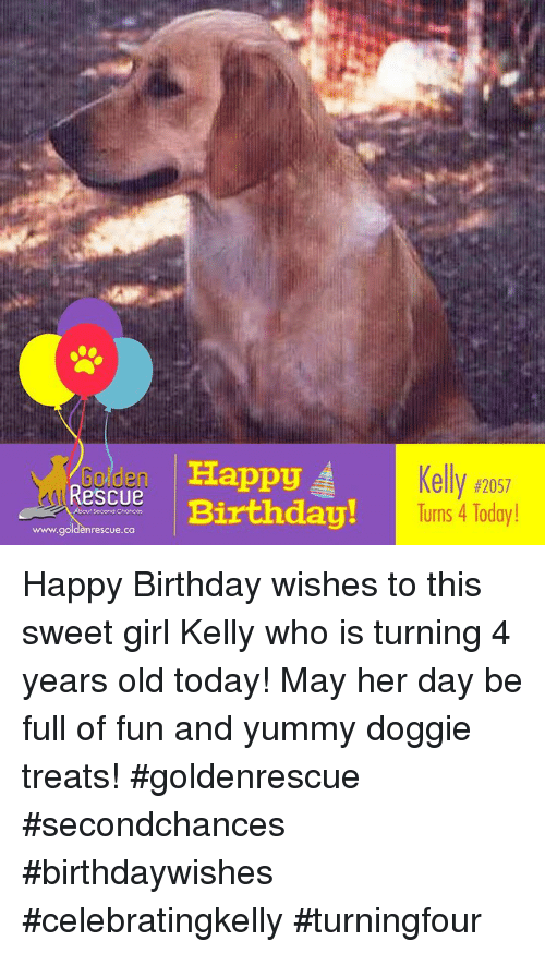 Birthday Memes And Happy Kell Rescu Turns 4 Today Nrescue