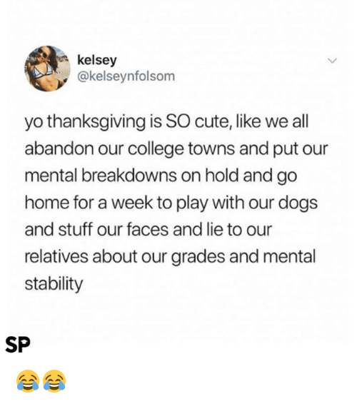 College, Cute, and Dogs: kelsey  @kelseynfolsom  yo thanksgiving is SO cute, like we all  abandon our college towns and put our  mental breakdowns on hold and go  home for a week to play with our dogs  and stuff our faces and lie to our  relatives about our grades and mental  stability  SP 😂😂