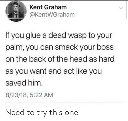 Head, Back, and Act: Kent Graham  @KentWGraham  If you glue a dead wasp to your  palm, you can smack your boss  on the back of the head as hard  as you want and act like you  saved him.  8/23/18, 5:22 AM Need to try this one