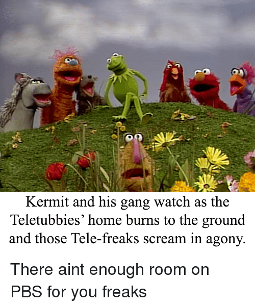 Kermit and His Gang Watch as the Teletubbies' Home Burns to the