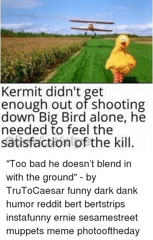 """Being Alone, Bad, and Dank: Kermit didn't get  enough out of shooting  down Big Bird alone, he  needed to feel the  satisfaction of the kill. """"Too bad he doesn't blend in with the ground"""" - by TruToCaesar funny dark dank humor reddit bert bertstrips instafunny ernie sesamestreet muppets meme photooftheday"""