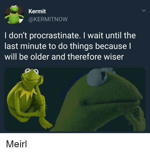 MeIRL, Will, and Kermit: Kermit  @KERMITNOW  I don't procrastinate. I wait until the  last minute to do things because  will be older and therefore wiser Meirl