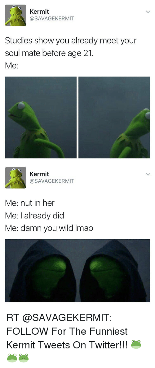 Memes, 🤖, and Kermit: Kermit  @SAVAGEKERMIT  Studies show you already meet your  soul mate before age 21.  Me   Kermit  SAVA KERMIT  Me: nut in her  Me: I already did  Me: damn you wild lmao RT @SAVAGEKERMlT: FOLLOW For The Funniest Kermit Tweets On Twitter!!! 🐸🐸🐸