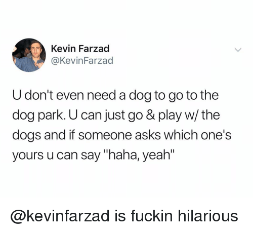"""Dogs, Yeah, and Dank Memes: Kevin Farzad  @KevinFarzad  U don't even need a dog to go to the  dog park. U can just go & play w/ the  dogs and if someone asks which one's  yours u can say """"haha, yeah"""" @kevinfarzad is fuckin hilarious"""