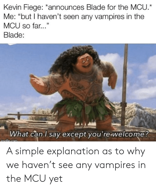 """Blade, Vampires, and Mcu: Kevin Fiege: *announces Blade for the MCU.  Me: """"but I haven't seen any vampires in the  MCU so far...""""  Blade:  What can I say except you're-welcome?  imaflin com A simple explanation as to why we haven't see any vampires in the MCU yet"""