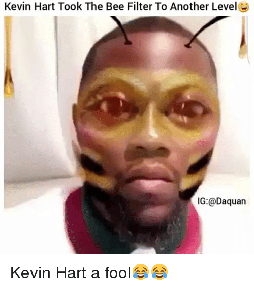 kevin hart took the bee filter to another levelg ig daquan 3212901 ✅ 25 best memes about kevin hart kevin hart memes,Funny Kevin Hart Memes