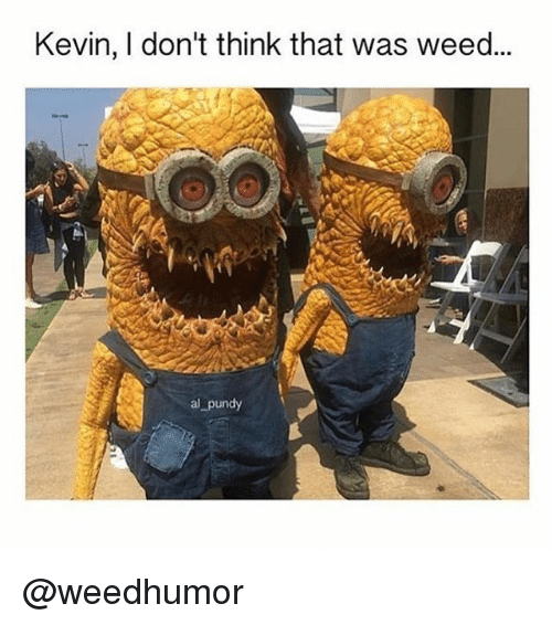 Memes, Weed, and 🤖: Kevin, I don't think that was weed...  al pundy @weedhumor
