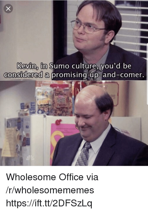 Office, Wholesome, and Culture: Kevin, in Sumo culture, vou'd be  considered a  promising up-and-comer Wholesome Office via /r/wholesomememes https://ift.tt/2DFSzLq