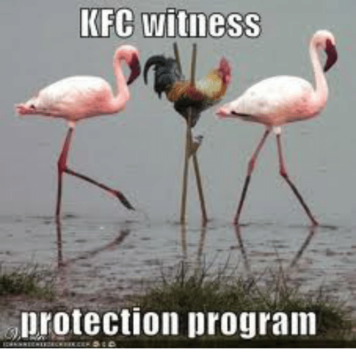 Image result for kfc witness protection meme
