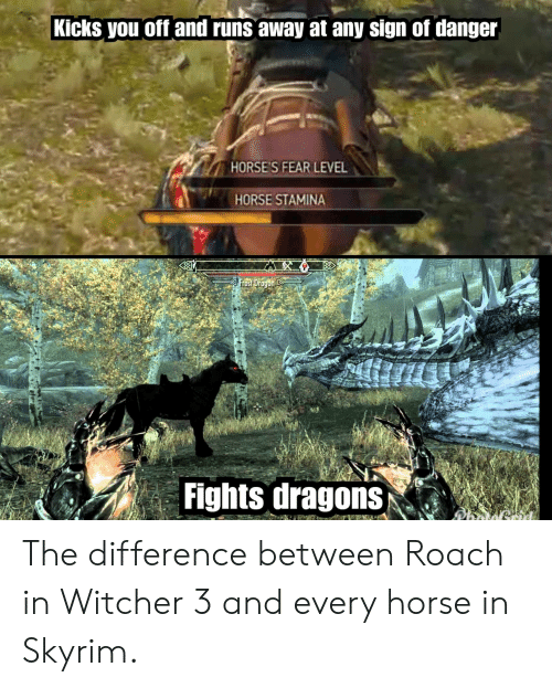 Horses, Skyrim, and Horse: Kicks you off and runs away at any sign of danger  HORSE'S FEAR LEVEL  HORSE STAMINA  Fights dragons The difference between Roach in Witcher 3 and every horse in Skyrim.