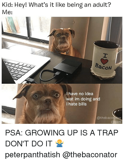 Being an Adult, Growing Up, and Memes: Kid: Hey! What's it like being an adult?  Me:  BacoN  ihave no idea  wat im doing and  i hate bills  @thebaconasor  al PSA: GROWING UP IS A TRAP DON'T DO IT 🙅♂️ peterpanthatish @thebaconator