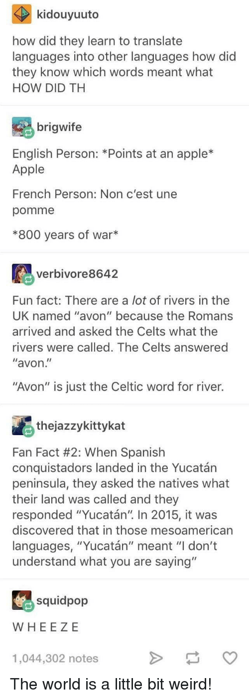 """Apple, Avon, and Celtic: kidouyuuto  how did they learn to translate  languages into other languages how did  they know which words meant what  HOW DID TH  brigwife  English Person: *Points at an apple*  Apple  French Person: Non c'est une  pomme  *800 years of war*  verbivore8642  Fun fact: There are a lot of rivers in thee  UK named """"avon"""" because the Romans  arrived and asked the Celts what the  rivers were called. The Celts answered  """"avon  """"Avon"""" is just the Celtic word for river.  thejazzykittykat  Fan Fact #2: When Spanish  conquistadors landed in the Yucatán  peninsula, they asked the natives what  their land was called and they  responded """"Yucatán"""" In 2015, it was  discovered that in those mesoamerican  languages, """"Yucatán"""" meant """"I don't  understand what you are saying""""  squidpop  WHEE ZE  1,044,302 notes The world is a little bit weird!"""