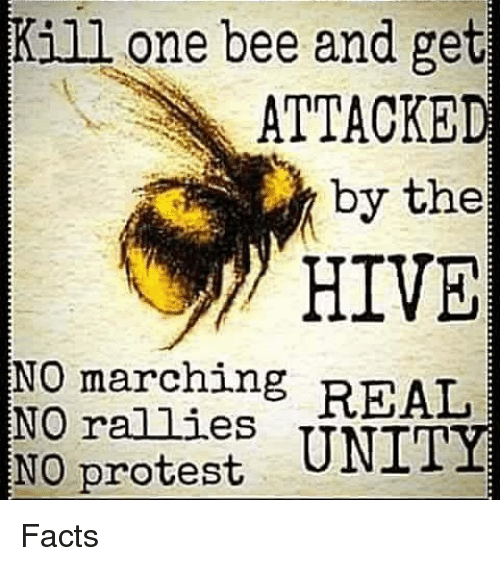 Kill One Bee and Get ATTACKED by the HIVE NO Marching REAL