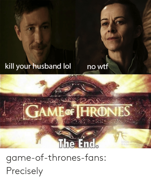 Game of Thrones, Tumblr, and Blog: kill your husband lolno  AMEHRONES  The End game-of-thrones-fans:  Precisely