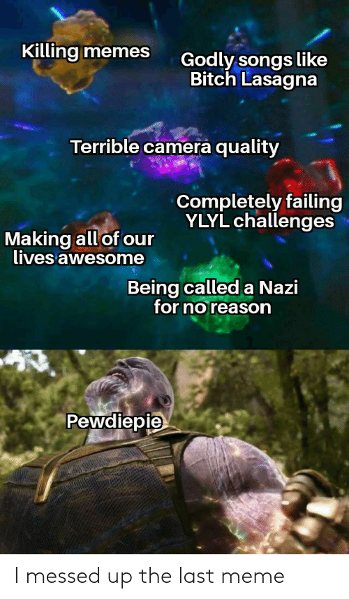 Bitch, Meme, and Memes: Killing memes  Godly songs like  Bitch Lasagna  Terrible camera quality  Completely failing  YLYL challenges  Making all of our  lives awesome  Being called a Nazi  for noreason  Pewdiepie I messed up the last meme