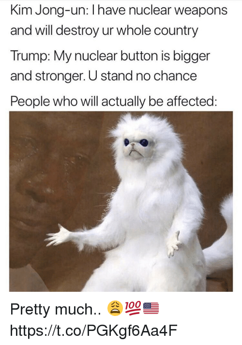 Kim Jong-Un, Trump, and Nuclear Weapons: Kim Jong-un: I have nuclear weapons  and will destroy ur whole country  Trump: My nuclear button is bigger  and stronger. U stand no chance  People who will actually be affected Pretty much.. 😩💯🇺🇸 https://t.co/PGKgf6Aa4F