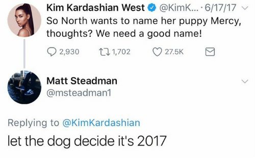 Kim Kardashian, Good, and Kardashian: Kim Kardashian West @KimK.... 6/17/17  So North wants to name her puppy Mercy,  thoughts? We need a good name!  02,930 奴1,702  27.5K  Matt Steadman  @msteadman1  Replying to @KimKardashian  let the dog decide it's 2017