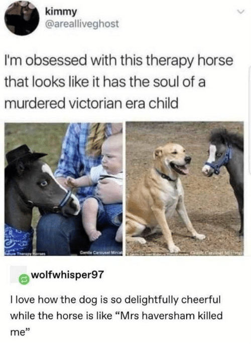 "Love, Horse, and Victorian Era: kimmy  @arealliveghost  I'm obsessed with this therapy horse  that looks like it has the soul of a  murdered victorian era child  Cendie Carousel Miia  Gat CariML  Tharapy Rone  wolfwhisper97  I love how the dog is so delightfully cheerful  while the horse is like ""Mrs haversham killed  me"""