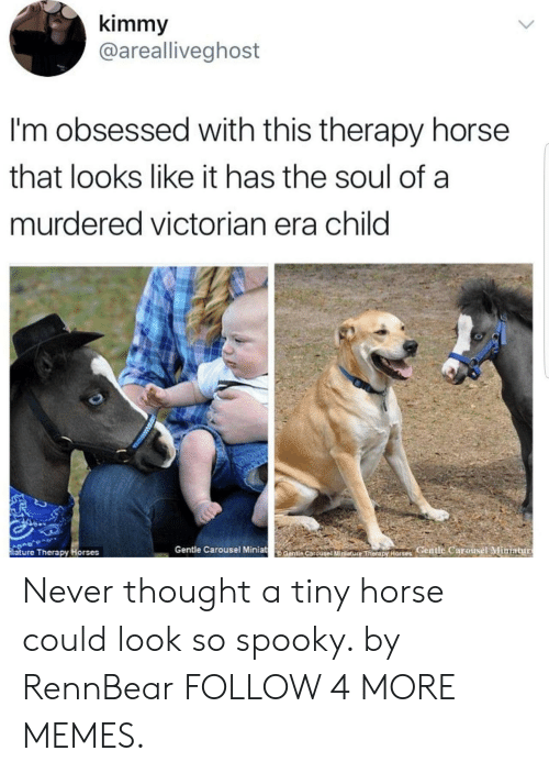 Dank, Horses, and Memes: kimmy  @arealliveghost  I'm obsessed with this therapy horse  that looks like it has the soul of a  murdered victorian era child  Gentle Carousel Miniat  entie Carouseiiniature Therax Horses Gentle Carousel Miniatur  iature Therapy Horses Never thought a tiny horse could look so spooky. by RennBear FOLLOW 4 MORE MEMES.