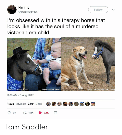 Horses, Horse, and Victorian Era: kimmy  Follow  @arealliveghost  I'm obsessed with this therapy horse that  looks like it has the soul of a murdered  victorian era child  aenite Carouse Mnicure Tiaany hores Gentle Carousel Miniature Therap  se Miniature Therapy Horses  Gentle Carousel Miniatur  3:09 AM - 6 Aug 2017  1,235 Retweets 3,051 Likes  17 1.2K  23  3.1K Tom Saddler