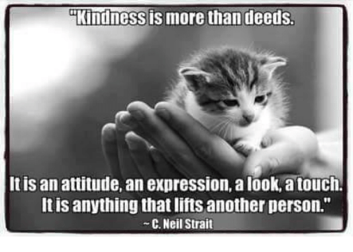 "Memes, Express, and Attitude: Kindness is more than deeds  It is an attitude, an expression, a look,atouch.  It is anything that lifts another person.""  C. Neil Strait"