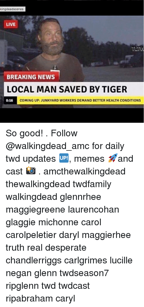 Desperate, Memes, and News: kingdeadscenes  LIVE  BREAKING NEWS  LOCAL MAN SAVED BY TIGER  0:16 COM  COMING UP:JUNKYARD WORKERS DEMAND BETTER HEALTH CONDITIONS So good! . Follow @walkingdead_amc for daily twd updates 🆙, memes 🚀and cast 📸 . amcthewalkingdead thewalkingdead twdfamily walkingdead glennrhee maggiegreene laurencohan glaggie michonne carol carolpeletier daryl maggierhee truth real desperate chandlerriggs carlgrimes lucille negan glenn twdseason7 ripglenn twd twdcast ripabraham caryl