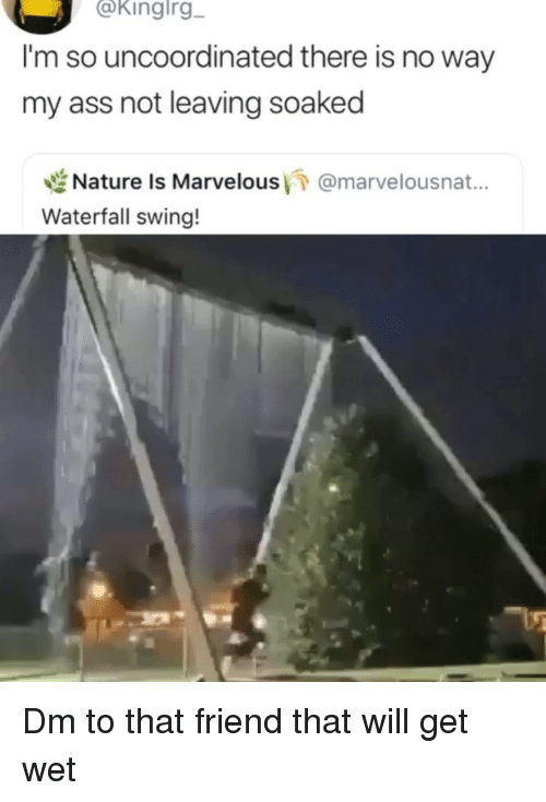 Ass, Memes, and Marvelous: @kingirg  I'm so uncoordinated there is no way  my ass not leaving soaked  世Nature is Marvelous/7 @marvelousnat..  Waterfall swing! Dm to that friend that will get wet