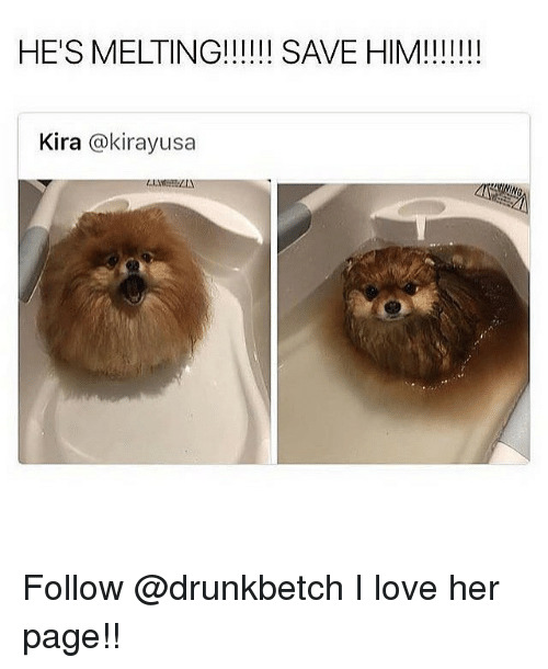 Love, Memes, and 🤖: Kira @kirayusa Follow @drunkbetch I love her page!!