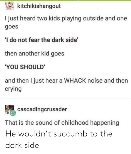 Crying, Kids, and Fear: kitchikishangout  I just heard two kids playing outside and one  goes  'I do not fear the dark side'  then another kid goes  'YOU SHOULD  and then I just hear a WHACK noise and then  crying  cascadingcrusader  That is the sound of childhood happening He wouldn't succumb to the dark side