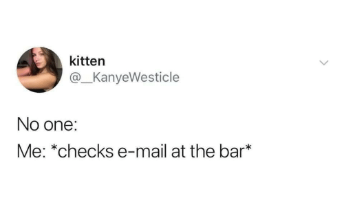 Checks By Mail >> Kitten No One Me Checks E Mail At The Bar Mail Meme On Me Me