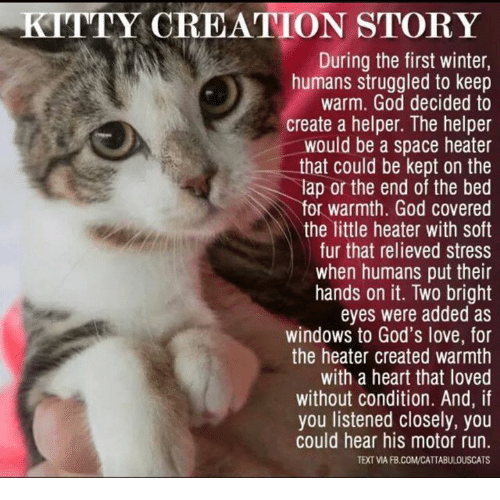 [Image: kitty-creation-story-during-the-first-wi...439823.png]
