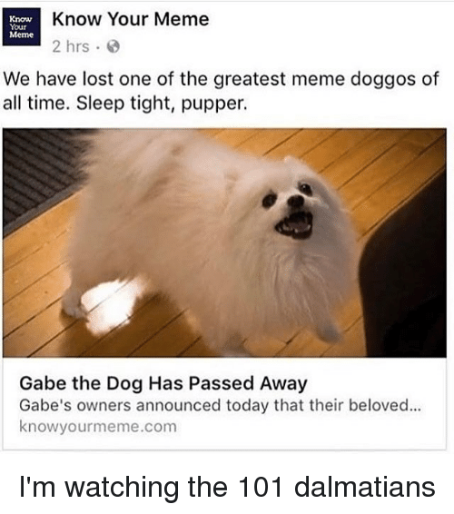 Ironic, 101 Dalmatians, and Beloved: Know  Know Your Meme  Your  Meme  2 hrs  We have lost one of the greatest meme doggos of  all time. Sleep tight, pupper.  Gabe the Dog Has Passed Away  Gabe's owners announced today that their beloved...  know yourme  .com I'm watching the 101 dalmatians