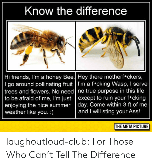 Ass, Club, and Friends: Know the difference  Hi friends, I'm a honey Bee.| Hey there motherf*ckers,  I go around pollinating fruit l'm a f*cking Wasp, I serve  trees and flowers. No need no true purpose in this life  to be afraid of me, I'm just except to ruin your f*cking  enjoying the nice summer day. Come within 3 ft.of me  weather like you.)  and I will sting your Ass!  THE META PICTURE laughoutloud-club:  For Those Who Can't Tell The Difference