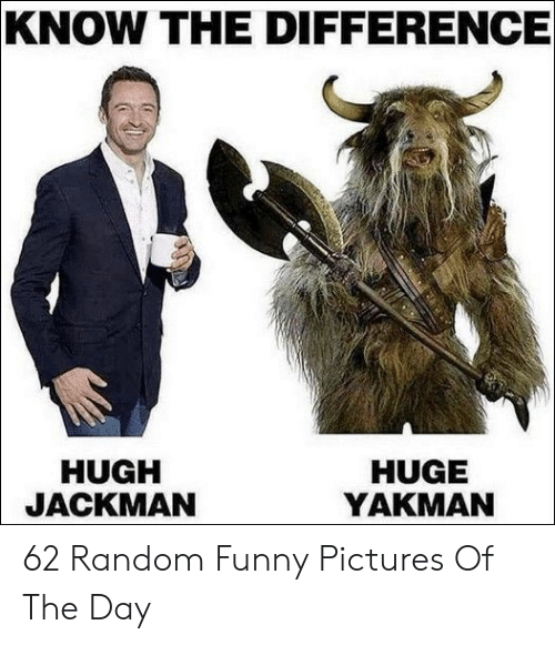 Funny, Hugh Jackman, and Pictures: KNOW THE DIFFERENCE  HUGH  JACKMAN  HUGE  YAKMAN 62 Random Funny Pictures Of The Day