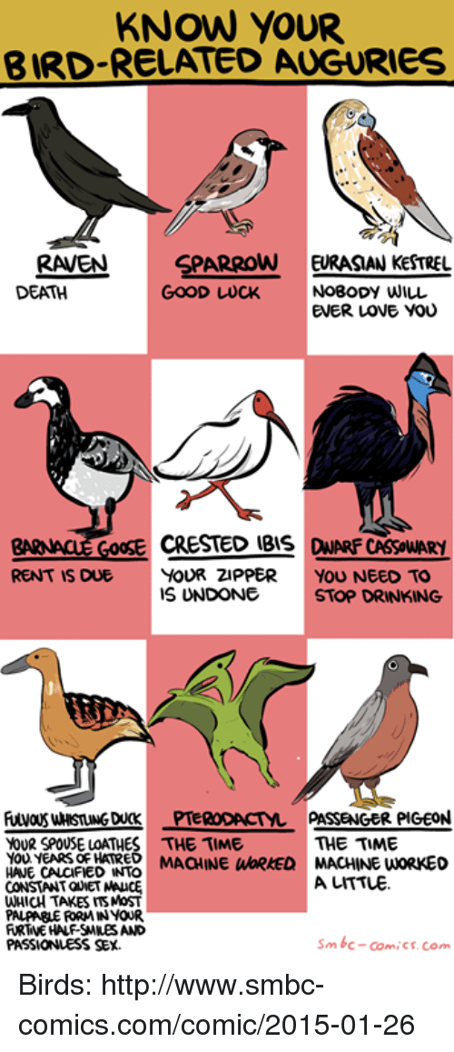 Drinking, Love, and Memes: KNOW YOUR  BIRD-RELATED AUGURIES  RAVEN SPARROW EURASIAN KESTREL  DEATH  NoBoDY WILL  EVER LOVE You  GOOD LWUCK  GOOSE CRESTED IBIS DWARF CASSOWARY  RENT IS DUE YOUR ZIPPER YOU NEED TO  IS UNDONE  STOP DRINKING  005 uMsnNGDUCK-TeRODACT-PASSENGER PIGEON  YOUR SPOUSE LOATHES THE TIME  THE TIME  O  HOUE EACIPE VD REO MACHINE WORKED MACHINE WORKED  MAOHINE WBRRED MACHINE  O YEARs oF HA MAHINE WWORKED MACHINE WORKEO  CONSTANT QUNET NA  WHICH TAKES ITSMoST  PALPABLE RORMIN YOUR  A UITTLE.  PASSIONLESS SEx.  Sm bc-ComiCs. Com Birds: http://www.smbc-comics.com/comic/2015-01-26