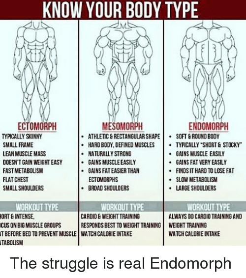 mass building workout routine for endomorphs eoua blog