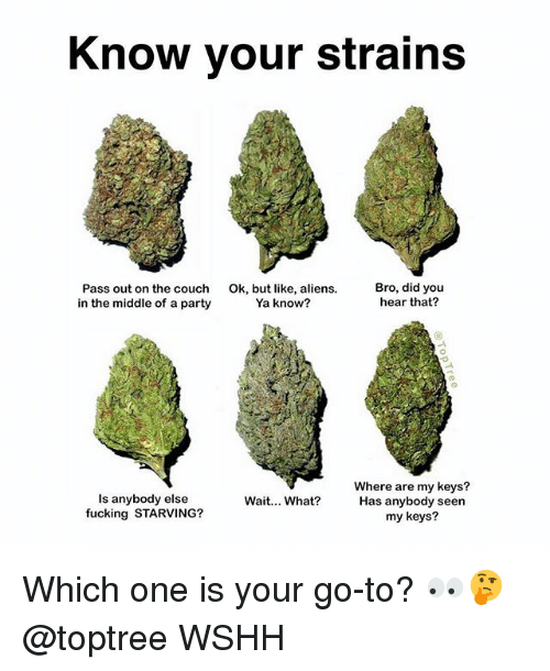 Fucking, Memes, and Party: Know your strain:s  Pass out on the couch  in the middle of a party  Ok, but like, aliens.  Ya know?  Bro, did you  hear that?  Is anybody else  fucking STARVING?  Where are my keys?  Has anybody seen  my keys?  Wait... What? Which one is your go-to? 👀🤔 @toptree WSHH