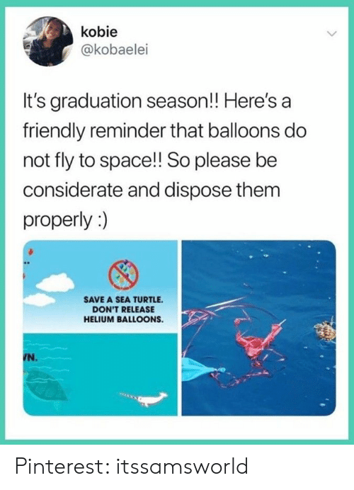Pinterest, Space, and Turtle: kobie  @kobaelei  It's graduation season!! Here's a  friendly reminder that balloons do  not fly to space!! So please be  considerate and dispose them  properly:)  SAVE A SEA TURTLE  DON'T RELEASE  HELIUM BALLOONS.  N. Pinterest: itssamsworld