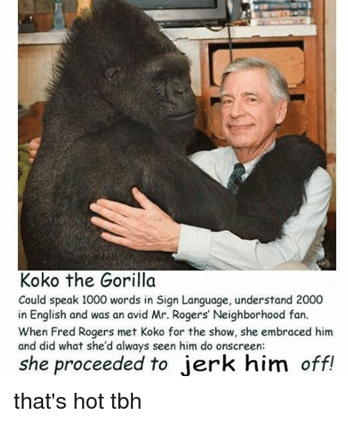 Koko The Gorilla Could Speak 1000 Words In Sign Language Understand 2000 In English And Was An Avid Mr Rogers Neighborhood Fan When Fred Rogers Met Koko For The Show She Embraced