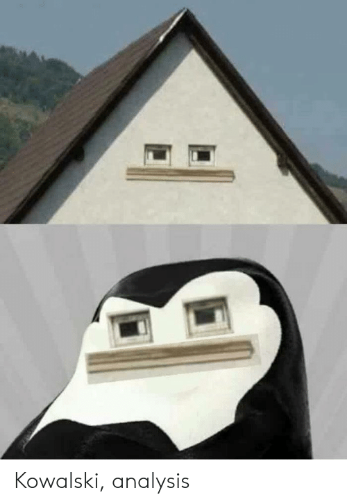 Kowalski Analysis | Analysis Meme on ME ME