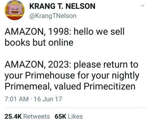KRANG T NELSON AMAZON 1998 Hello We Sell Books but Online