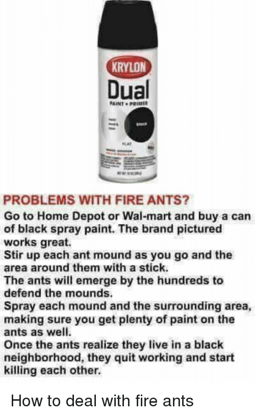 Krylon Dual Aint Prime Problems With Fire Ants Go To Home Depot Or