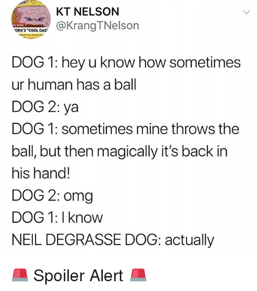 """Dad, Funny, and Omg: KT NELSON  KrangTNelson  ORK'S """"cOOL DAD  DOG 1: hey u know how sometimes  ur human has a ball  DOG 2: ya  DOG 1: sometimes mine throws the  ball, but then magically it's back in  his hand!  DOG 2: omg  DOG 1: I know  NEIL DEGRASSE DOG: actually 🚨 Spoiler Alert 🚨"""