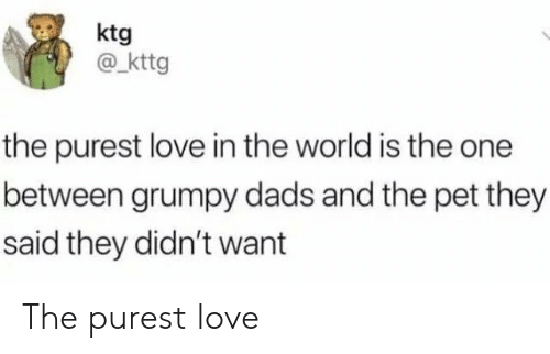 Love, World, and Pet: ktg  @kttg  the purest love in the world is the one  between grumpy dads and the pet they  said they didn't want The purest love