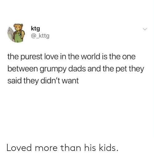 Dank, Love, and Kids: ktg  @kttg  the purest love in the world is the one  between grumpy dads and the pet they  said they didn't want Loved more than his kids.
