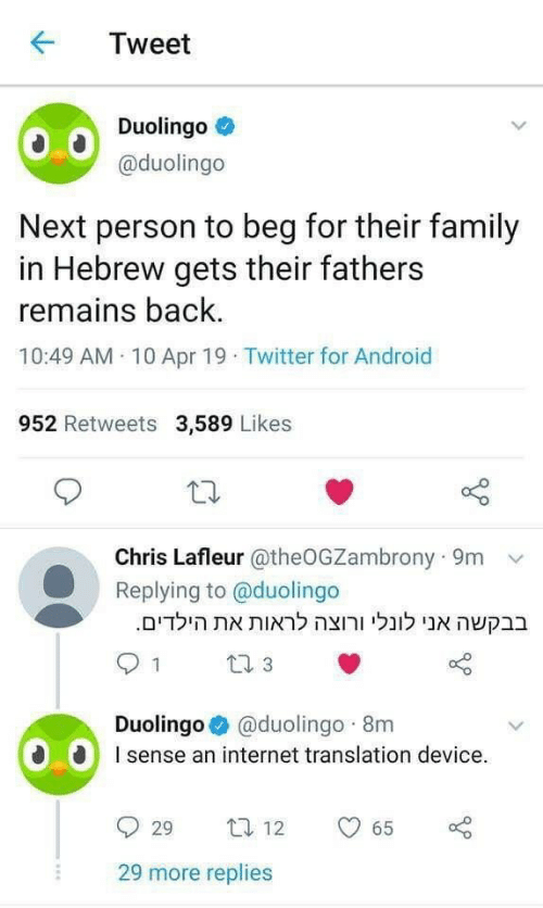 Android, Family, and Internet: KTweet  Duolingo  @duolingo  Next person to beg for their family  in Hebrew gets their fathers  remains back  10:49 AM 10 Apr 19 Twitter for Android  952 Retweets 3,589 Likes  Chris Lafleur @theOGZambrony 9m  Replying to @duolingo  .הילדיםאת לראות ורוצה לונלי אנו בבקשה  Duolingo @duolingo 8m  sense an internet translation device.  929 ta 12  29 more replies  65