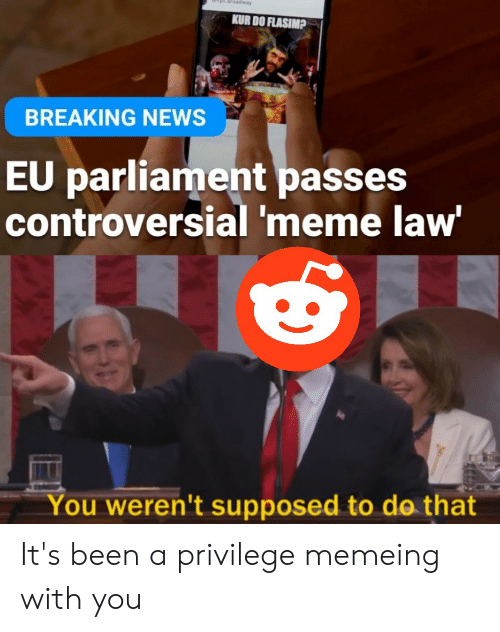 Meme, News, and Reddit: KUR DO FLASIMP  BREAKING NEWS  EU parliament passes  controversial 'meme law  You weren't supposed to do that It's been a privilege memeing with you